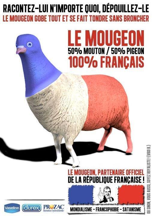 Les français, leurs médecins, leurs médicaments et leurs sécu Mougeon_v3